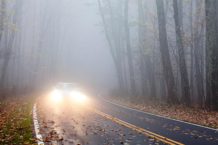 Expertentipp: Augen auf im Herbst: Sicher unterwegs mit dem Auto